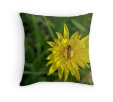 Afternoon refreshment Throw Pillow