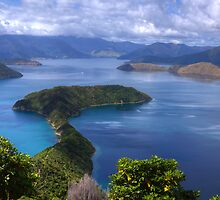 Maud Island, Marlborough Sounds, New Zealand by nzpixconz