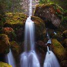 Watson Falls I by Tula Top