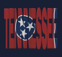 Tennessee flag by stuwdamdorp