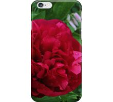 Double red peony. iPhone Case/Skin