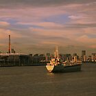 Cruise in Shanghai skyline by ArtPhotographer