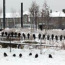 Lewisham Bridge Primary School in the Snow by John Gaffen