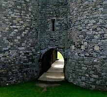 Beaumaris Castle by tunna