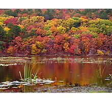 Clayton Lake Reflections Photographic Print