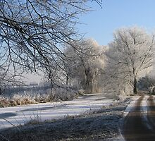 Winter scene  by Johanna26