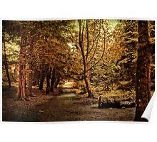 An Autumn Walk  Poster