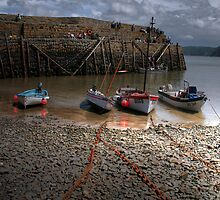 Clovelly, North Devon by vicky lewis