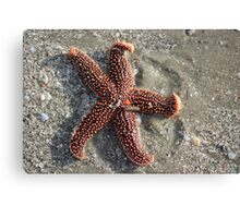 Red Star on the Beach Canvas Print