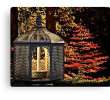 November in the park Canvas Print