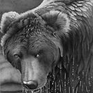 Wet Bear in Ball Point Pen by Ron  Monroe