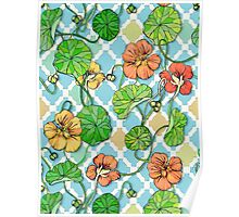 Climbing Nasturtiums on Blue and White Poster