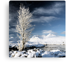 Glencoe winter scenery Canvas Print