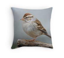 Little Sparrow in Winter Throw Pillow