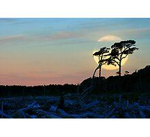 moonshine.bruce bay.sth westland.nz Photographic Print
