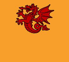bretagne tregor dragon breton Unisex T-Shirt