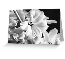 New Years Bloom Greeting Card