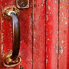 The Red Door by Rae Tucker