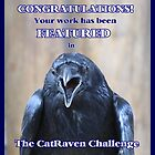 CatRaven Challenge Feature Banner by hummingbirds