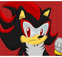 Shadow Hedgehog Photographic Print