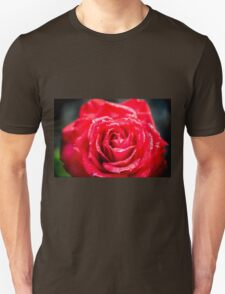 selective focus close up of a red rose flower T-Shirt
