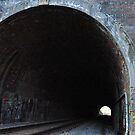 Henryton Tunnel by Robin Black