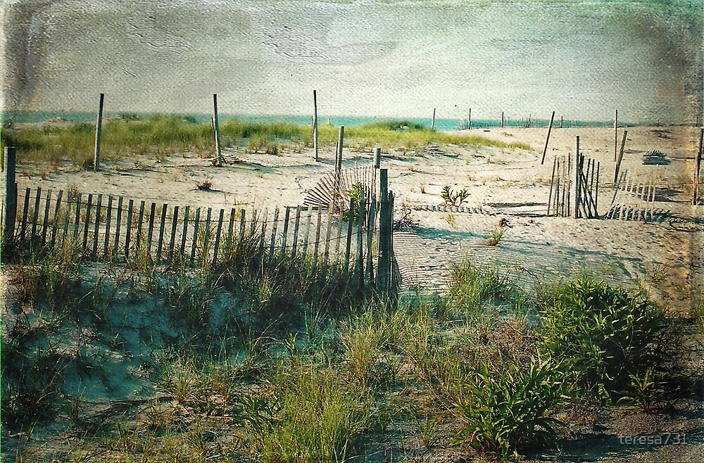 The Beach - Chincoteaque Beach, Virginia - Dedicated to Dad by teresa731
