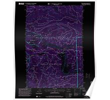USGS Topo Map Washington State WA Meeks Table 242288 2000 24000 Inverted Poster
