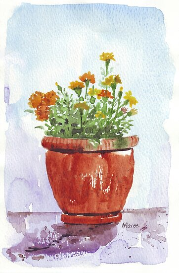 French Marigolds by Maree  Clarkson