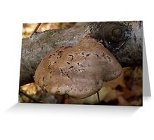 Fungus on Tree Greeting Card