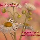 Happy Birthday - Card by jules572