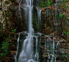Minnamurra Falls. by Julie  White