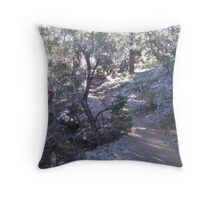 Peaceful Paths Throw Pillow