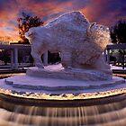 Surreal Buffalo by John Attebury