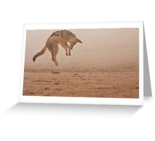 Flying in fog Greeting Card