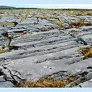 Aran Limestone by dOlier