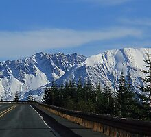 The Crater Mt St Helens Washington by PrettyPix