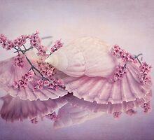 Marittima by ♛ VIAINA