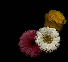 Pink, Yellow & White Flowers by Snogable