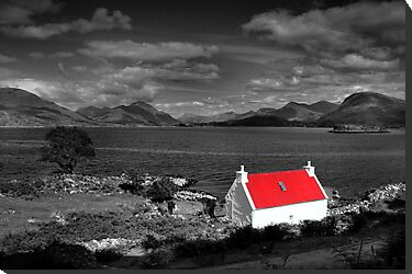 Red roofed cottage selective colour. by John Ellis