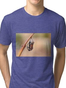 common tiger butterfly emerging from its cocoon Tri-blend T-Shirt