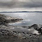 Rain at Jackfish Bay by Douglas Hunt