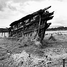 Remains of a once proud ship by Robert Down