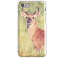 White Tailed Buck iPhone Case/Skin