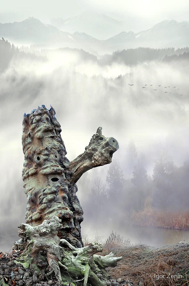 Misty Hills by Igor Zenin
