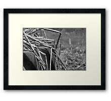 Cast out Into The Cold Framed Print