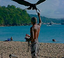 The Man and the Seabirds 5 by Turtle6