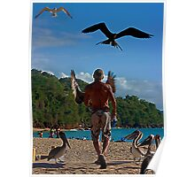 The Man and the Seabirds Poster