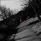 Little Red by Oli Johnson