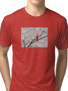 Cardinal on an Overcast Day Tri-blend T-Shirt